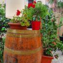 giardino canuleia trattoria lucca anfiteatro 2020